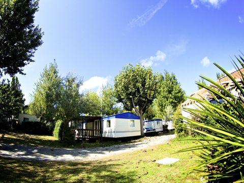 Camping Le Marais Neuf - Camping Vendée - Image N°17