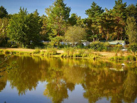 Camping Coeur de Vendée - Camping Vendée - Image N°34