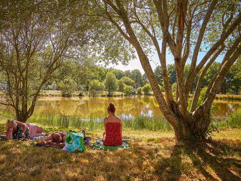 Camping Coeur de Vendée - Camping Vendée - Image N°36