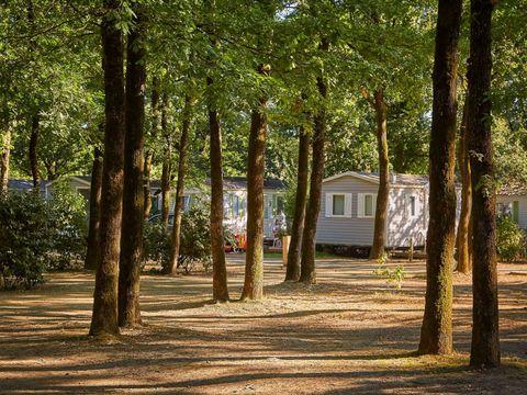Camping Coeur de Vendée - Camping Vendée - Image N°33