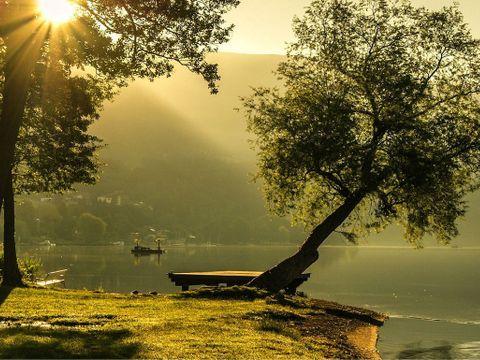 Camping Les Pinasses - Camping Vosges - Image N°22