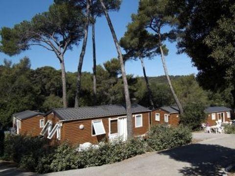Domaine Résidentiel de Plein Air La Forêt de Janas  - Camping Var - Image N°4