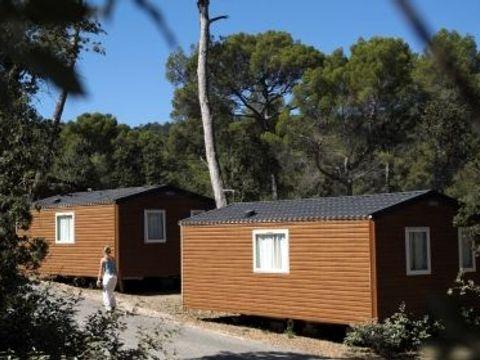 Domaine Résidentiel de Plein Air La Forêt de Janas  - Camping Var - Image N°5