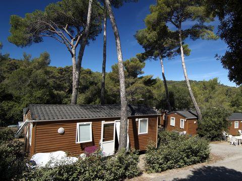 Domaine Résidentiel de Plein Air La Forêt de Janas  - Camping Var - Image N°8