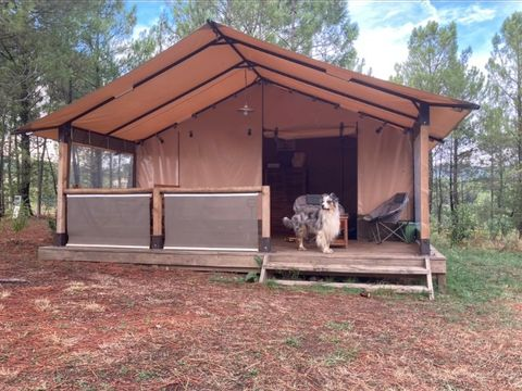 Camping Hello Soleil - Camping Ardeche - Image N°21