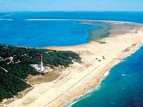 Camping Palmyre Loisirs  - Camping Charente-Maritime - Image N°12