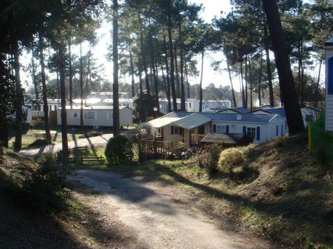 Camping Palmyre Loisirs  - Camping Charente-Maritime - Image N°10