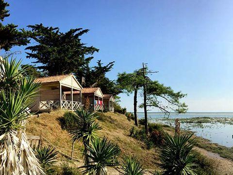 Camping Le Bellevue - Camping Vendée - Image N°8