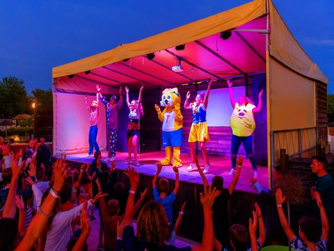 Camping Domaine de Chaussy - Camping Ardeche - Image N°20