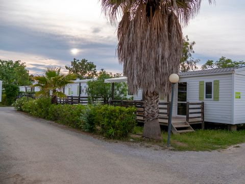 Camping California & Oasis  - Camping Pyrenees-Orientales - Image N°19