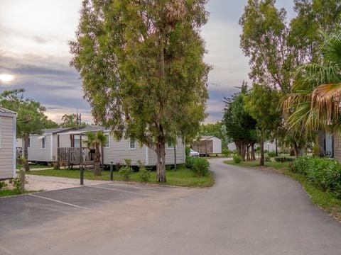 Camping California & Oasis  - Camping Pyrenees-Orientales - Image N°20