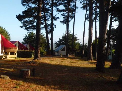 Camping de l'Océan - Camping Morbihan - Image N°11