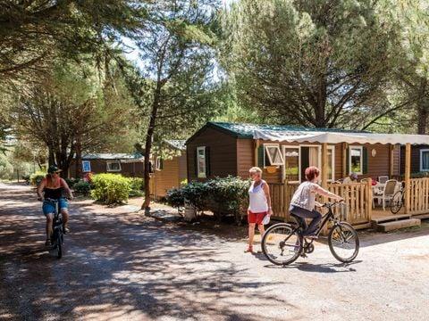Domaine Résidentiel de Plein Air Tamarins Plage - Camping Charente-Maritime