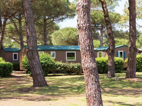 Domaine Résidentiel de Plein Air Tamarins Plage - Camping Charente-Maritime - Image N°9