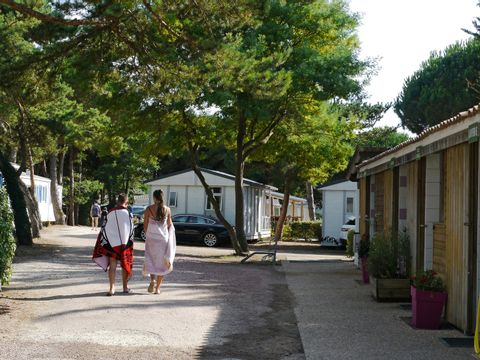 Camping Le Suroit  - Camping Charente-Maritime - Image N°16
