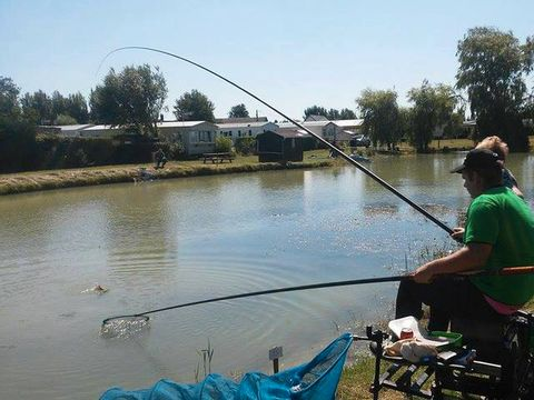 Somme  Camping Le Tarteron - Camping Somme - Afbeelding N°10