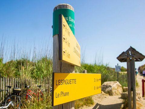 Camping La Marine - Camping Gard - Image N°26