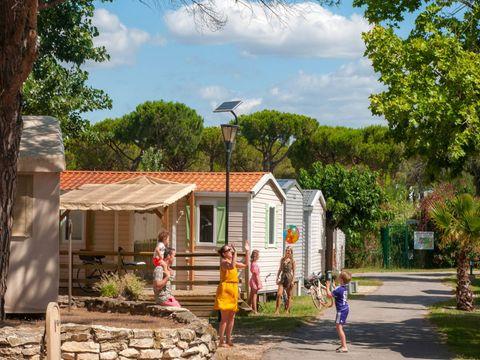 Camping La Marine - Camping Gard - Image N°24