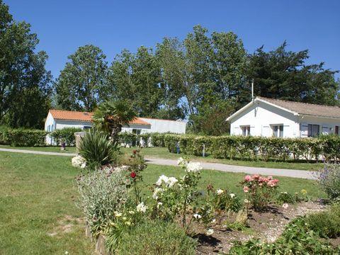 Village Vacances les Gîtes de Montmartre - Camping Vendée - Image N°14