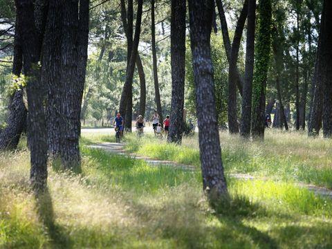Camping les Embruns - Camping Gironde - Image N°50