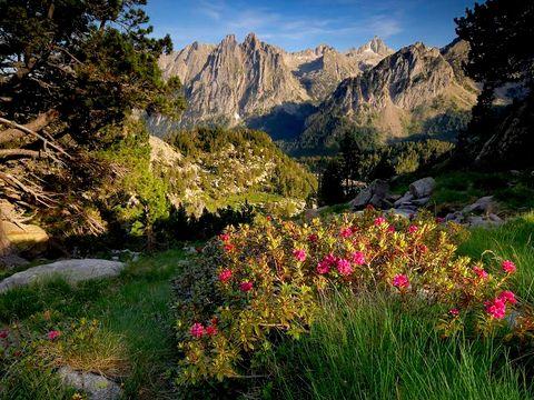 Camping Borda del Pubill - Camping Lleida - Image N°14