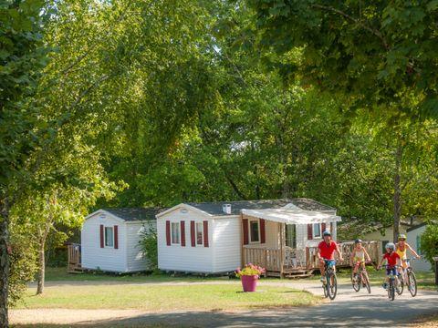 Camping Le Mas  - Camping Dordogne - Image N°17