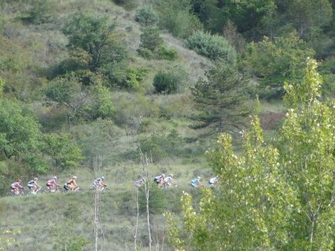 Camping Ludo - Camping Ardeche - Image N°40