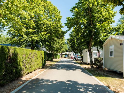 Camping Club Le Trianon  - Camping Vendée - Image N°30