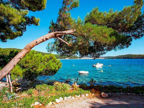 Camping Poljana  - Camping Istrie - Image N°3