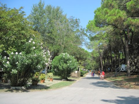 Camping Spina Village  - Camping Ferrare - Image N°40