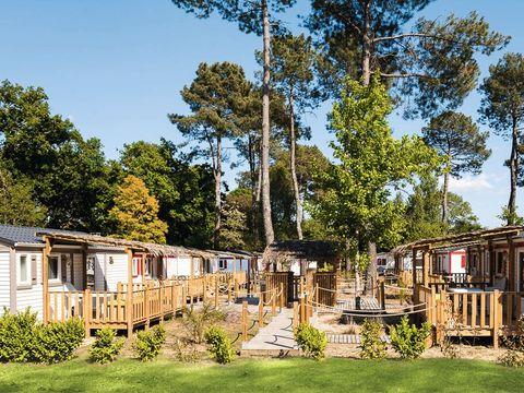 Camping Le Soleil des Landes - Camping Landes - Image N°10