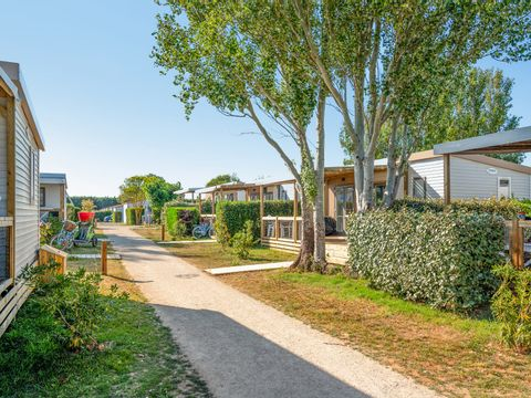 Flower Camping Les Ilates - Camping Charente-Maritime - Image N°19