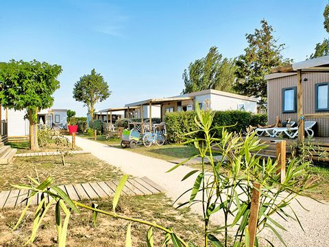 Flower Camping Les Ilates - Camping Charente-Maritime - Image N°20