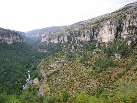 Camping l'Olivier - Camping Gard - Image N°10