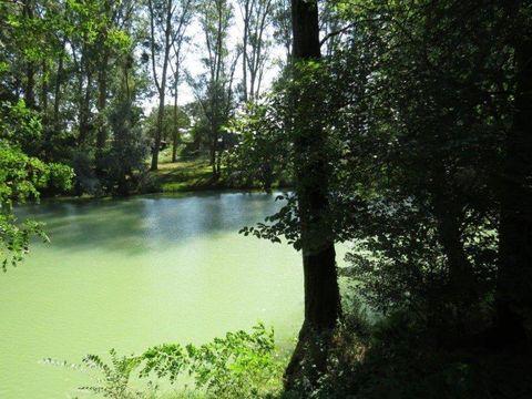 Camping La Bastide - Camping Ariège - Image N°23