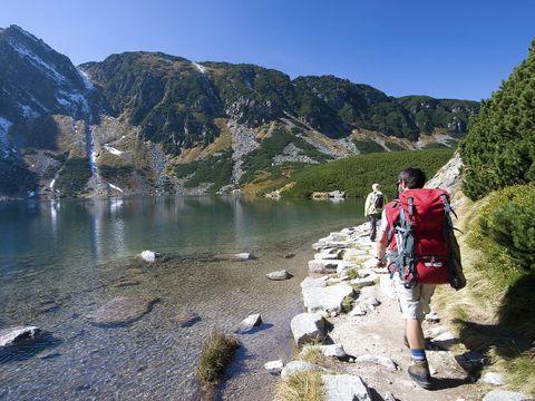 La Forêt - Camping Sites et Paysages - Camping Hautes-Pyrenees - Image N°12