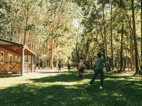 Moncontour Active Park - Camping Vienne - Image N°9