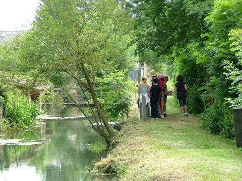 Moncontour Active Park - Camping Vienne - Image N°16