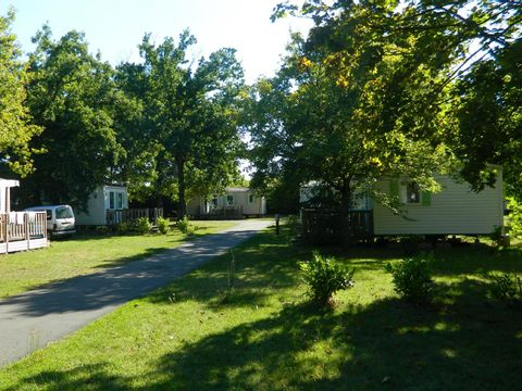 Camping Les Peupliers - Camping Indre e Loira - Image N°6