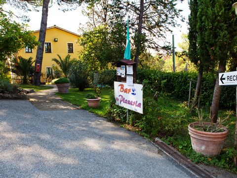 Pisa  Camping Toscana Holiday Village - Camping Pisa - Afbeelding N°8