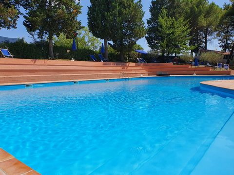 Pisa  Camping Toscana Holiday Village - Camping Pisa - Afbeelding N°3
