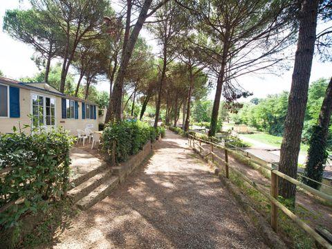 Camping Toscana Holiday Village - Camping Pise - Image N°26