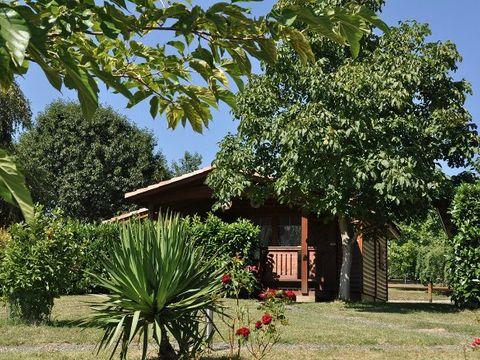 Camping Midi Pyrénées - Camping Paradis - Camping Haute-Garonne - Image N°29