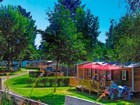 Camping Parc de Fecht - Camping Haut-Rhin - Image N°2