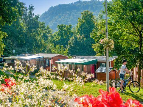 Camping Parc de Fecht - Camping Haut-Rhin - Image N°13