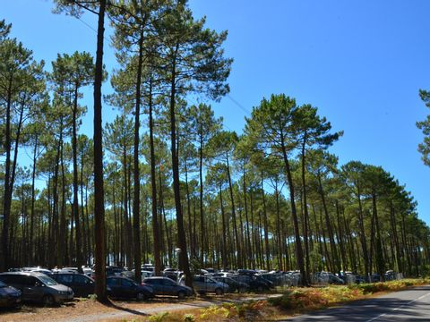 Landes  Camping Club Famille Lou Pignada  - Camping Landes - Afbeelding N°18