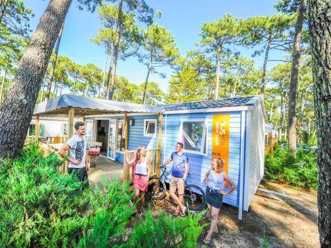 Camping Club Famille Lou Pignada  - Camping Landes - Image N°26