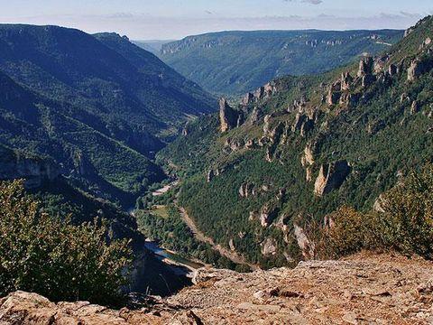Domaine Aigoual Cévennes - Camping Lozere - Image N°13