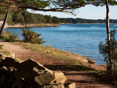 Camping et Parc Les Goelands  - Camping Morbihan - Image N°11