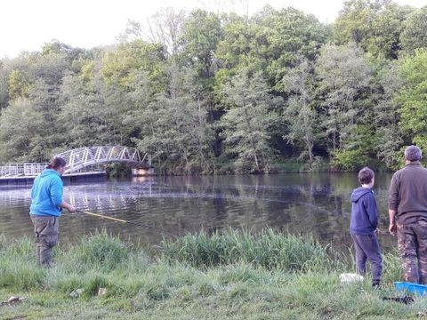 Camping Le Parc de Vaux  - Camping Mayenne - Image N°10